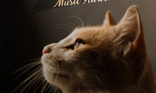 La Compilation del Sanremo Music Awards 2020 in uscita sui Digital Store e nei maggiori negozi di dischi